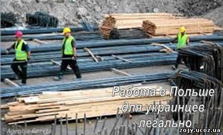 Трудовые мигранты в Польше. Трудоустройство украинцев в Польше