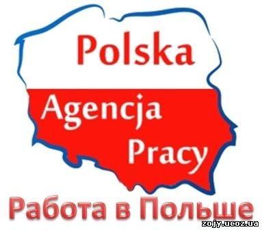 Польский язык. Работа в Польше