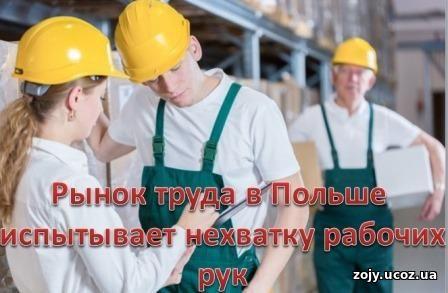 Сезонная работа на рынке труда в Польше